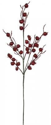Berrysprayred35